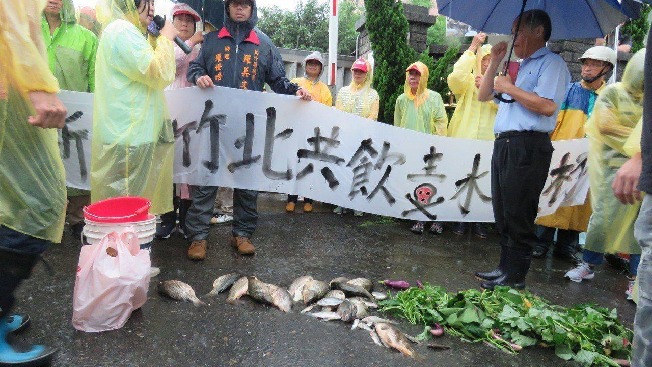 新竹鎮關西鎮民,今天到龍潭工業區化工廠前集結抗議,牛欄水域汙染魚群暴斃案。冒雨群...