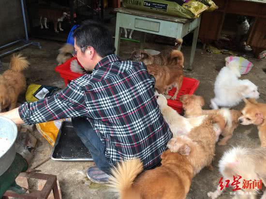 張凱餵養他的狗。(紅星新聞)