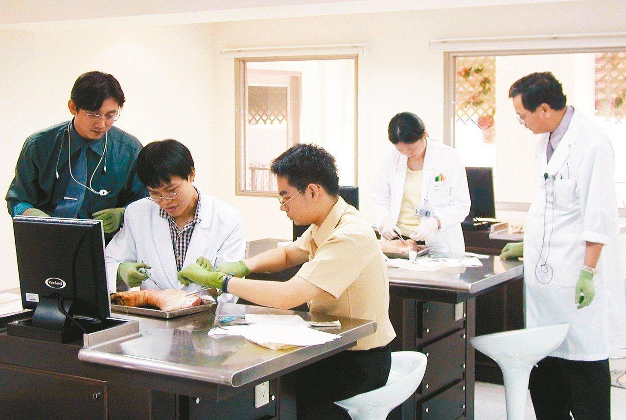 醫學生縫豬腳,學習手術縫合技巧。 圖/聯合報系資料照片