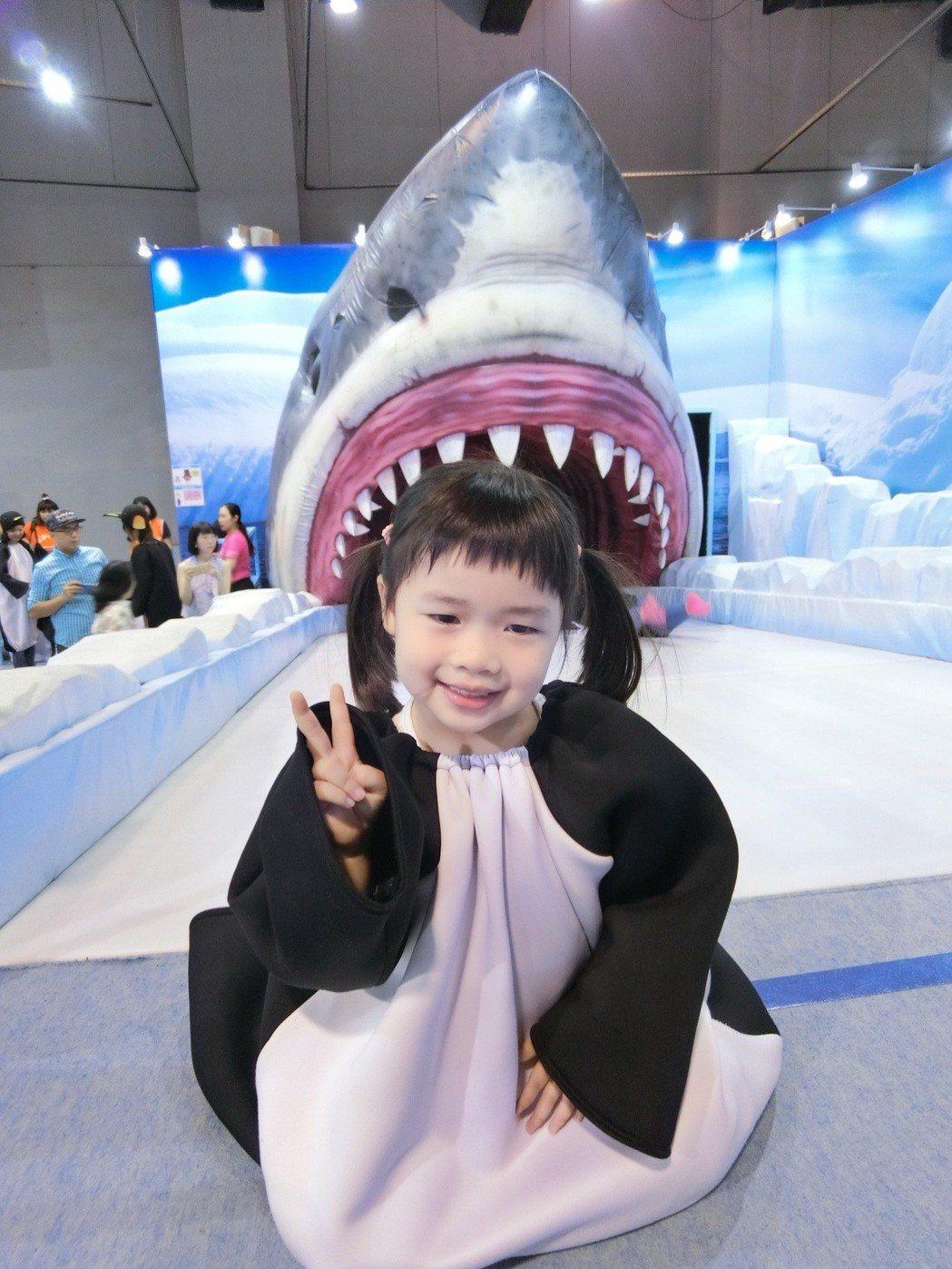 小朋友變身成為企鵝,學習企鵝用腹部滑行,準備往鯊魚的大嘴巴裡滑去,刺激又好玩。 ...