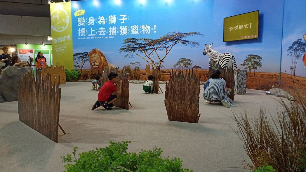 親子扮演起獅子,藏匿在草叢中準備獵補斑馬,爸媽玩得比小朋友還high。 聯合數位...