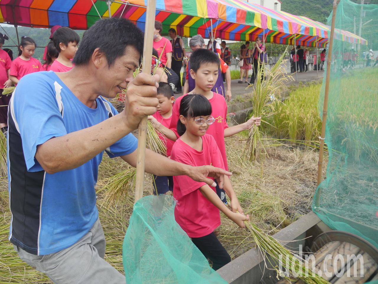 除了割稻,學童也要學習使用打穀機。記者徐白櫻/攝影