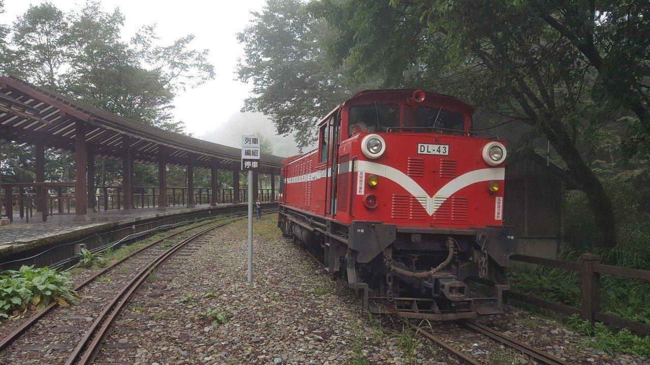 阿里山林業鐵路各列車今天都正常行駛。 。記者謝恩得/翻攝