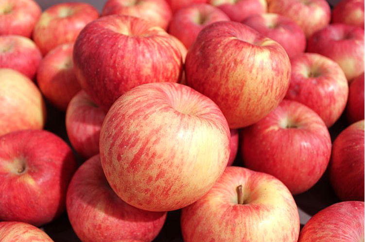 大陸蘋果價格飛漲,有人調侃道,「這不是我在吃蘋果,這是蘋果在吃我啊。」(新浪微博...