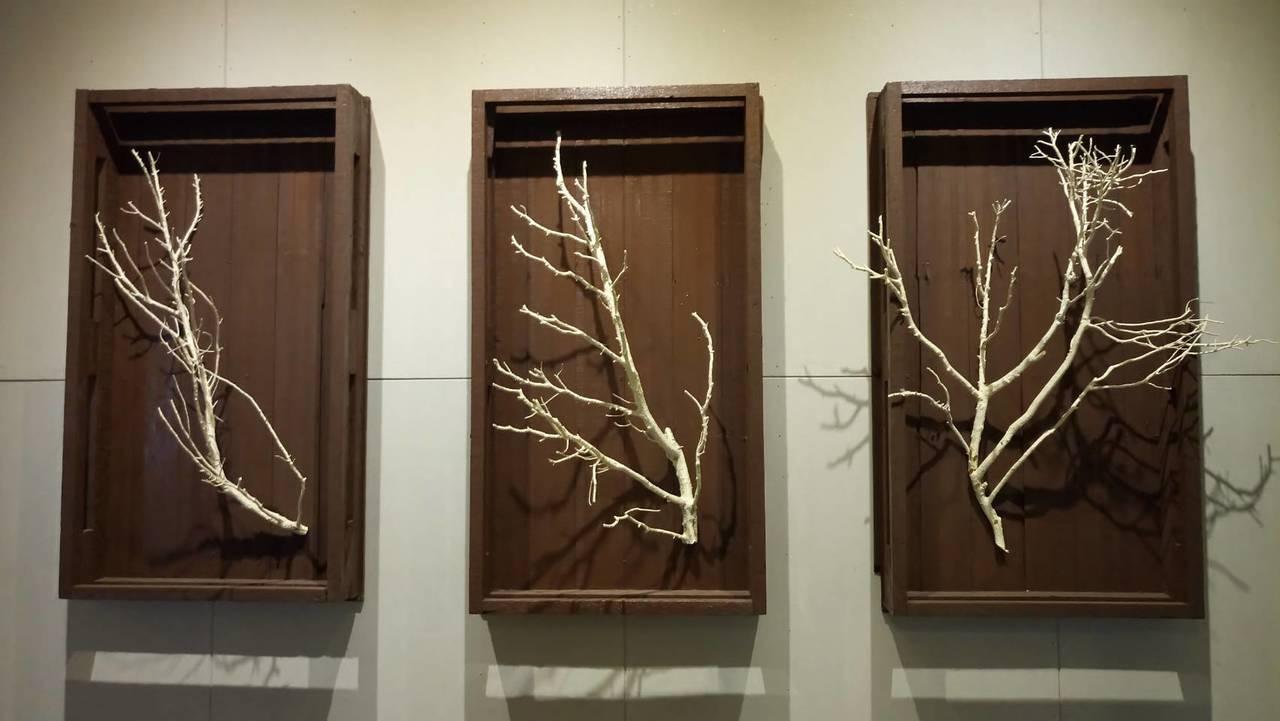 枯枝的框也是回收再利用的品。記者鄭國樑/攝影