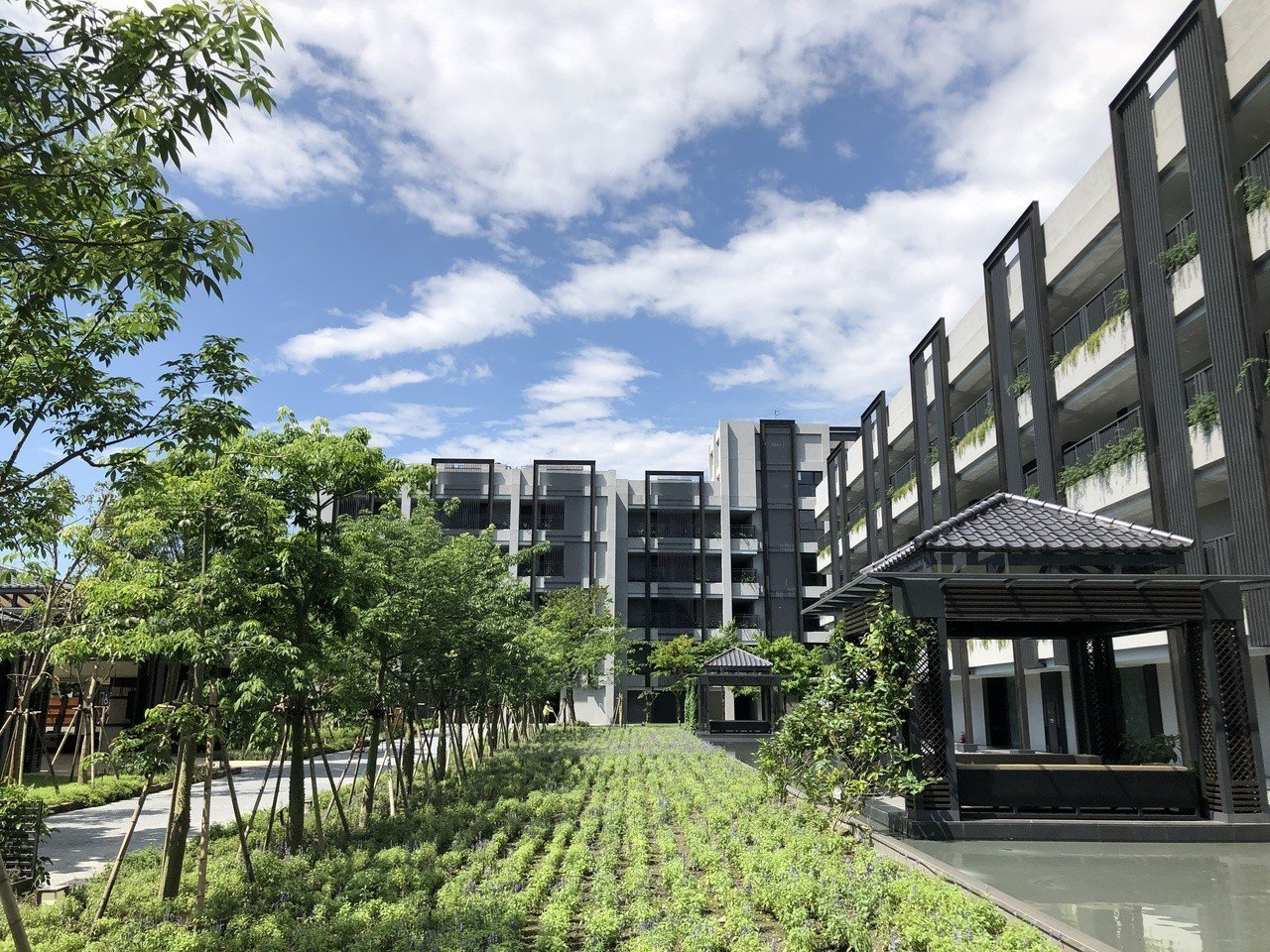 酒店共規劃142間客房,在規劃設計時,就將生態自然元素融入酒店每一個空間,從眼、...