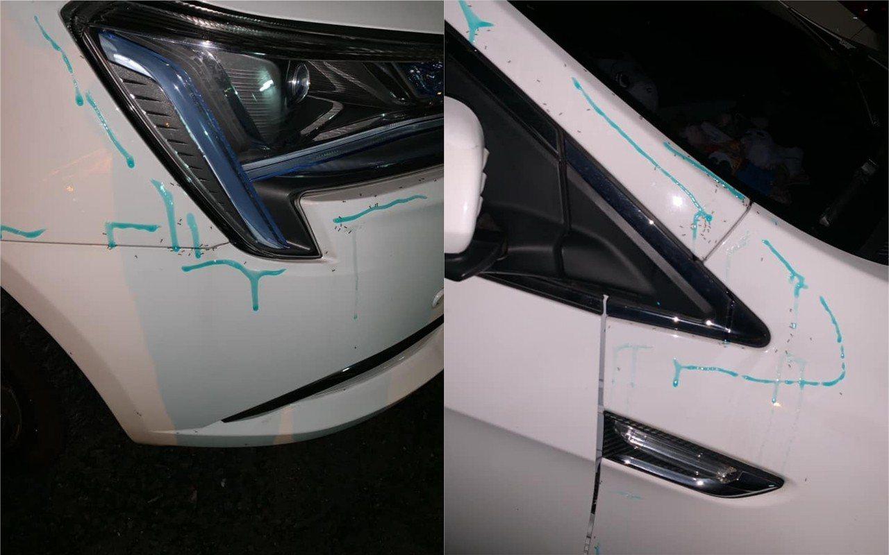 女性駕駛在網路上求救,雖然有用除蟲藥引誘螞蟻爬出車外,卻難以完全清除,有不少網友...