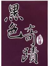 圖一、註冊第01542341號「宸禎黑色奇蹟」商標 (圖片來源:TIPO)