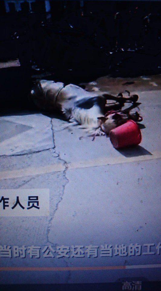 白馬被警車圍堵在一處死胡同中並遭擊斃。圖:擷自騰訊視頻