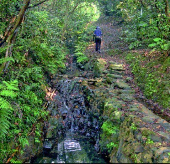 宜蘭縣頭城鎮外澳的石空步道,是淡蘭山徑系統之一,北北基宜首長將在6月1日會師同登...