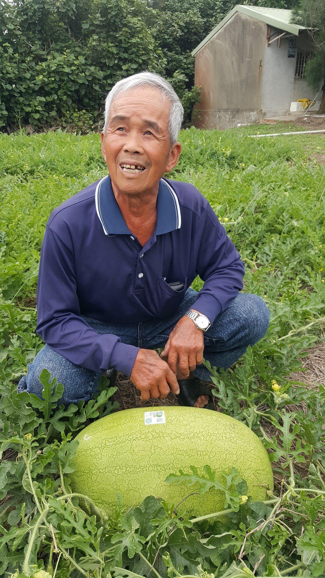 在後龍鎮清海宮附近種西瓜的老農王忠義,近年來在白沙屯媽祖婆網 站協助行銷下,建立...