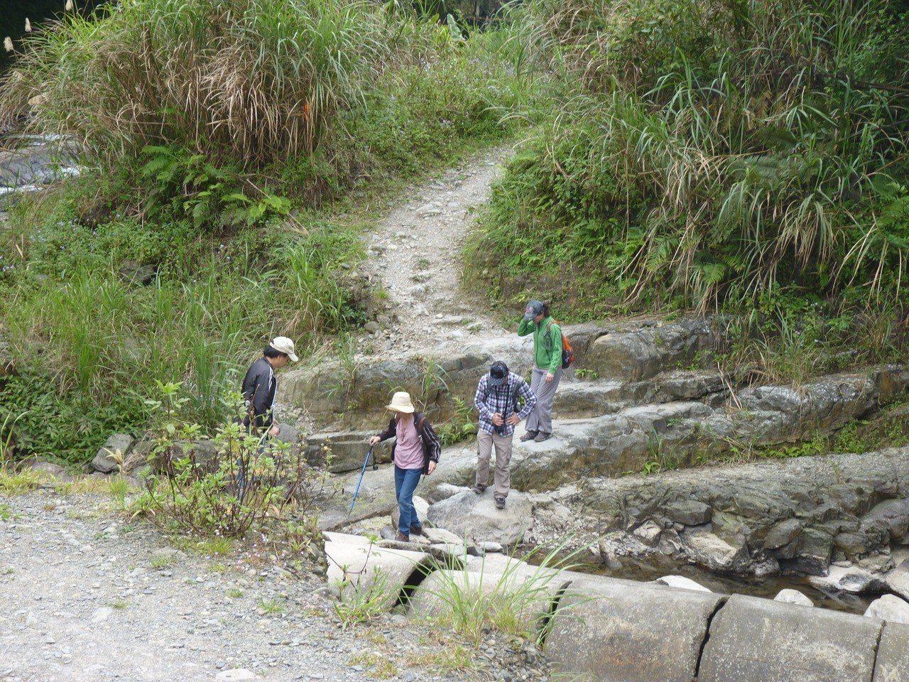烏來區桶後越嶺步道原是一條自然步道,但如今步道因遭颱風摧毀,多所崩塌。 報系資料...