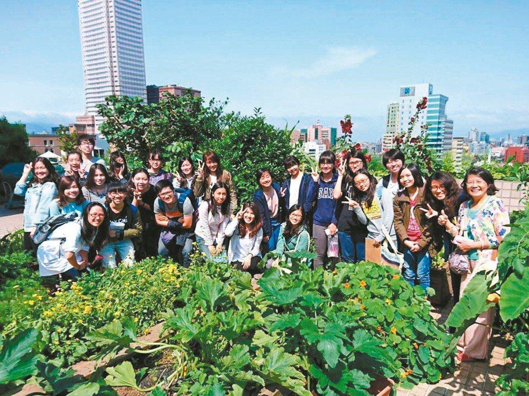 博仲辦公樓頂耕耘空中農園,吸引許多朋友拜訪交流心得。 圖╱博仲提供