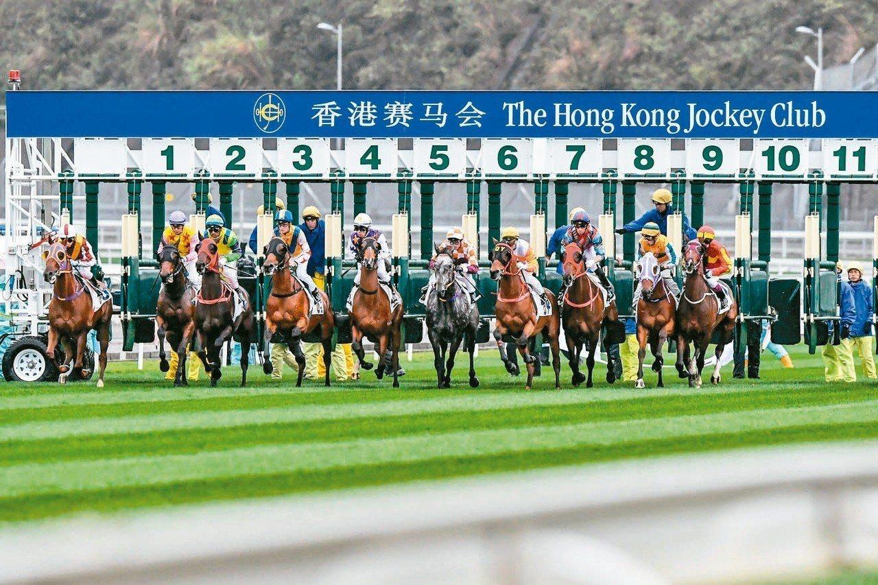 海南賽馬有譜了,可望帶旺育馬、交易、賽事、餐飲等逾4,500億元市場。 中新社