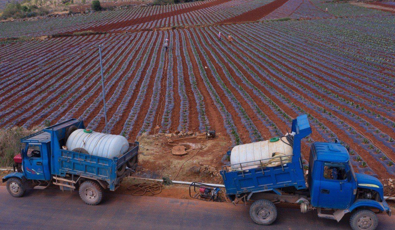 雲南大旱加重 近百萬人臨時飲水困難 西雙版納州已發布停課通知 新華社