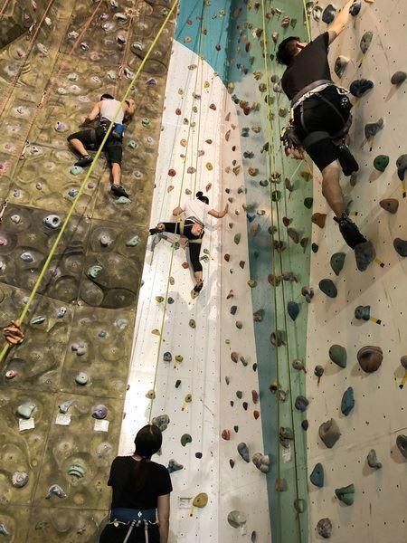 免費!竹縣體育會攀岩健身班 今天開放線上報名
