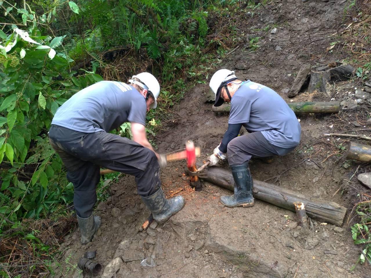 太平山鳩之澤自然步道有220公尺是號召志工用手工打造。圖/林務局羅東林區管理處提...