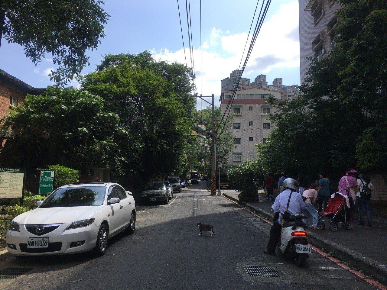 台北市化南新村今天上午第三度進行文資會勘。記者魏莨伊/攝影