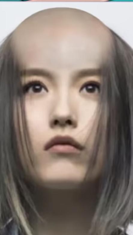 韓睿的合成光頭照。圖/摘自YouTube