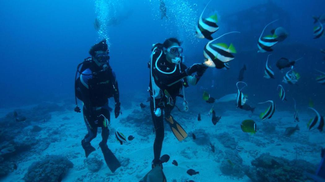 廖奕琁學潛水。圖/凱渥提供