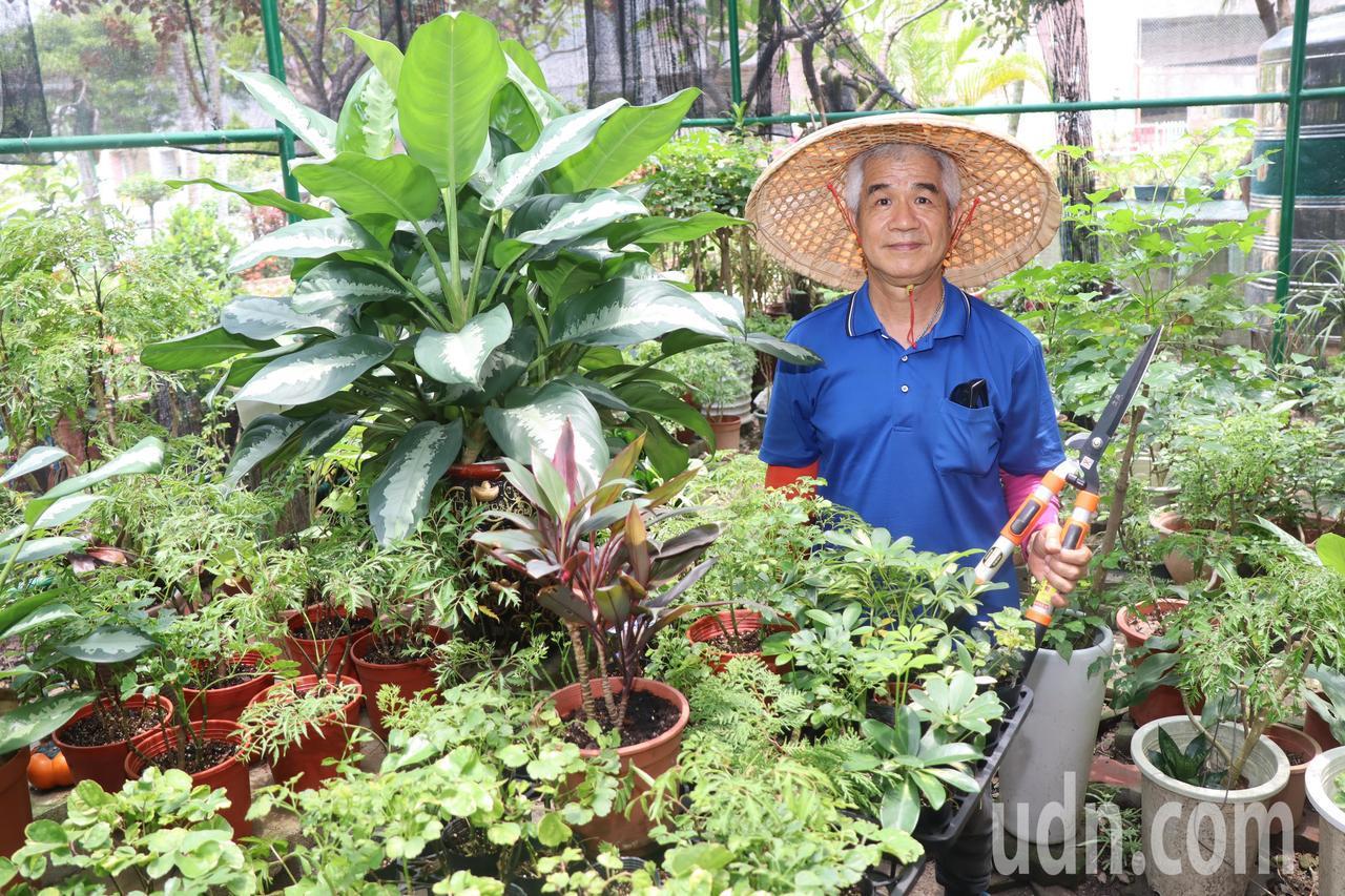 吳清宗平時也協助教師園藝教學需求,協助規劃植物盆栽及蔬果有機栽種區,讓認知功能缺...