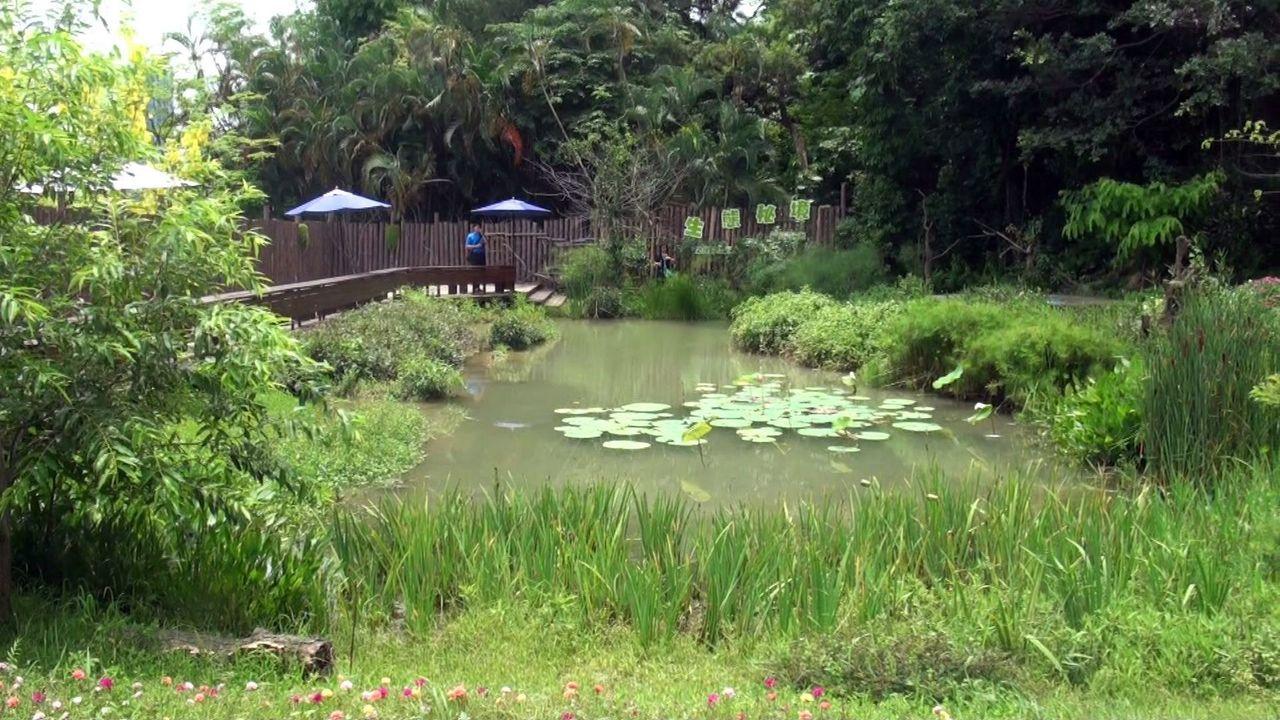 蔣宋美齡昔日位在澄清湖園區裡的夢幻花園,如今轉化為螢化蟲復育園區,讓外界得以一窺...