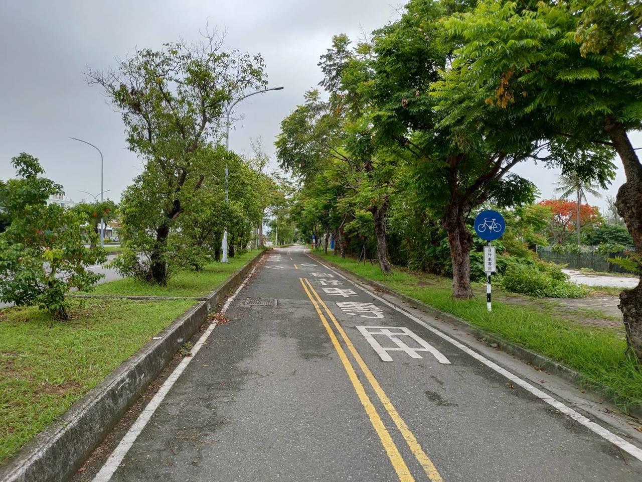 台東市馬亨亨大道上的自行車專用道是台東市民騎自行車或慢跑最愛場域之一。記者羅紹平...