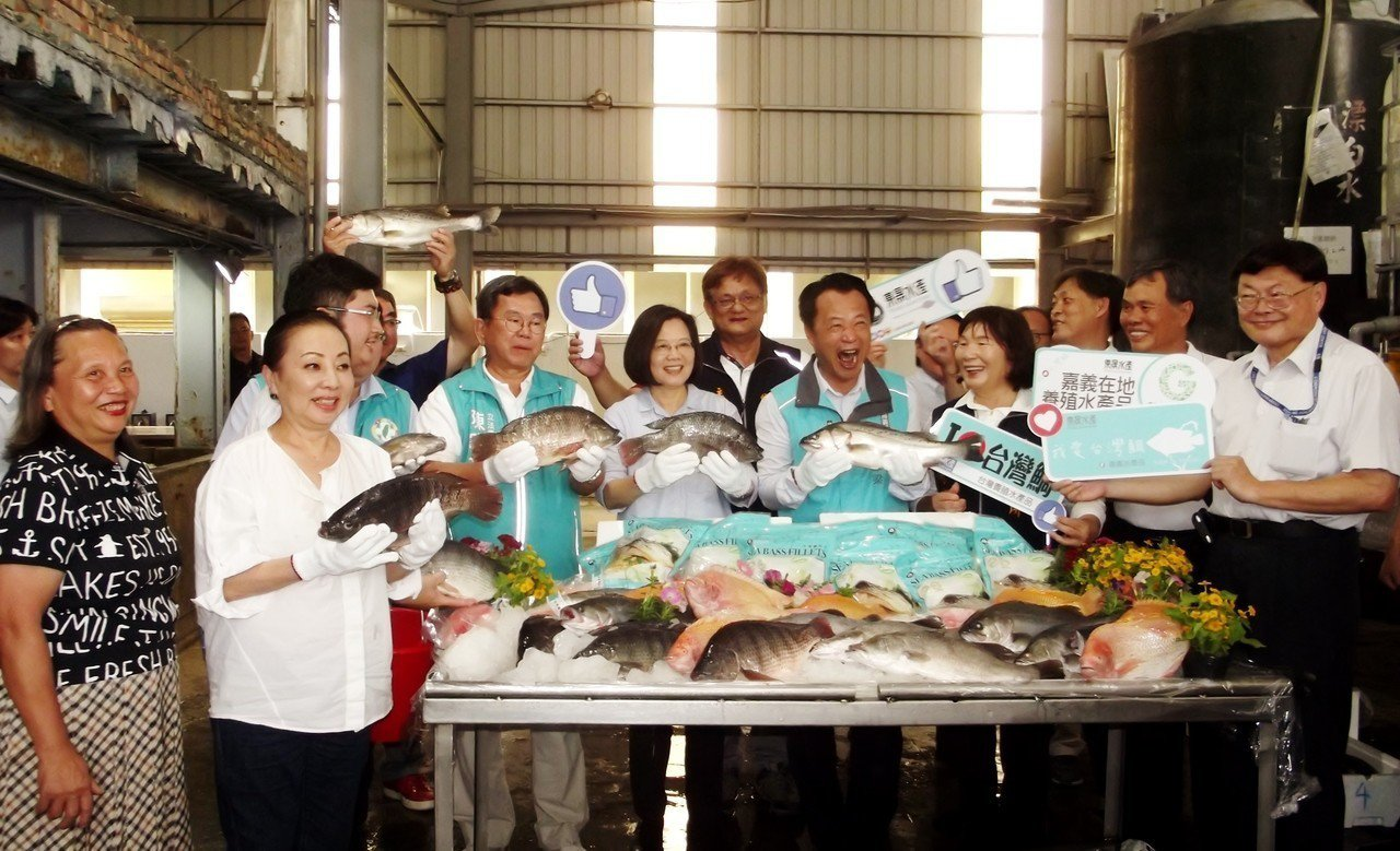 總統蔡英文參觀東晟水產養殖公司的成果。記者謝恩得/攝影