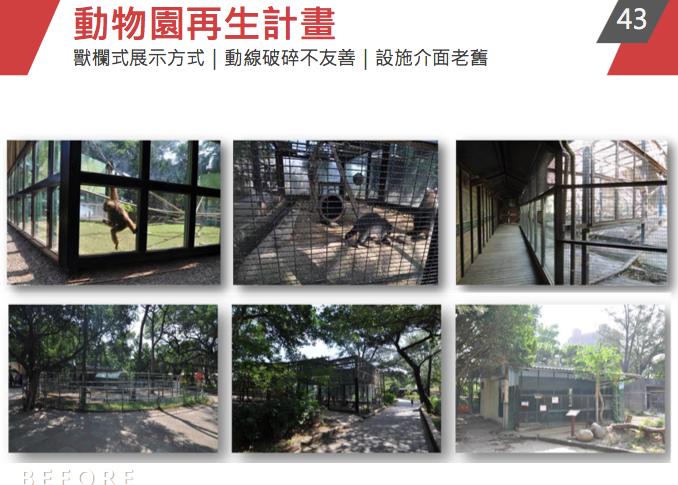 新竹市動物園閉園將滿兩年前夕,傳出今年又有18隻動物死亡。記者張雅婷/翻攝
