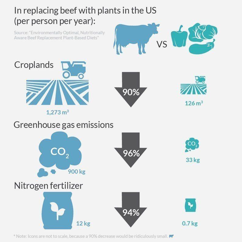 全球暖化的隐形元凶!畜牧业不能说的秘密 - udn 联合新闻网 -6358111