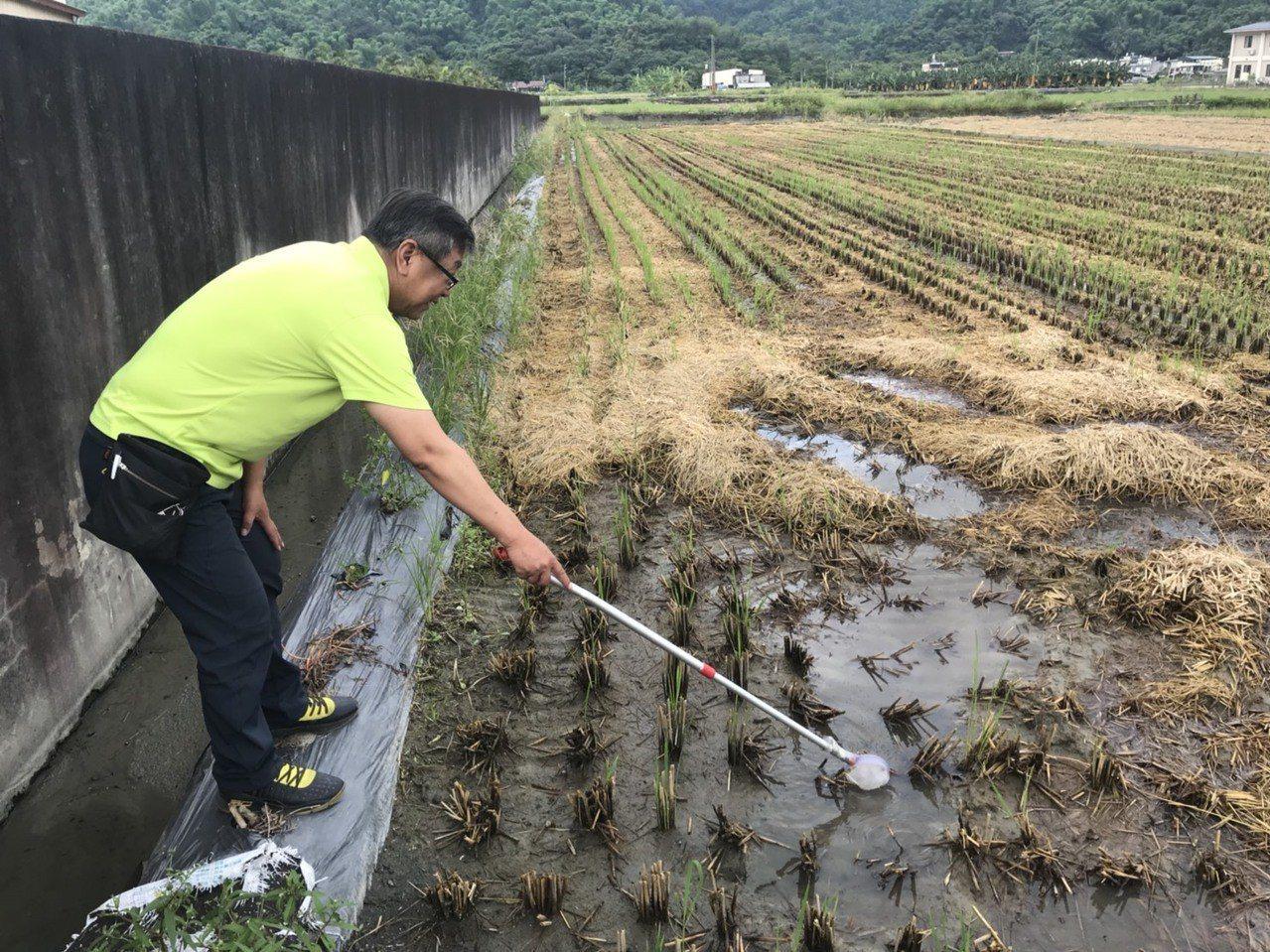 衛生單位在個案活動的美濃區進行日本腦炎相關疫情調查。圖/高雄市衛生局提供