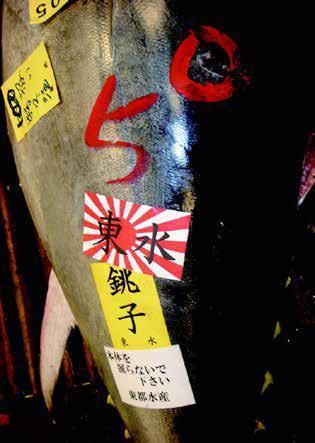 圖說1:東京築地市場的黑鮪魚。圖、文/時報出版《海鮮的美味輓歌:健康吃魚、拒絕濫捕,挽救我們的海洋從飲食開始!》