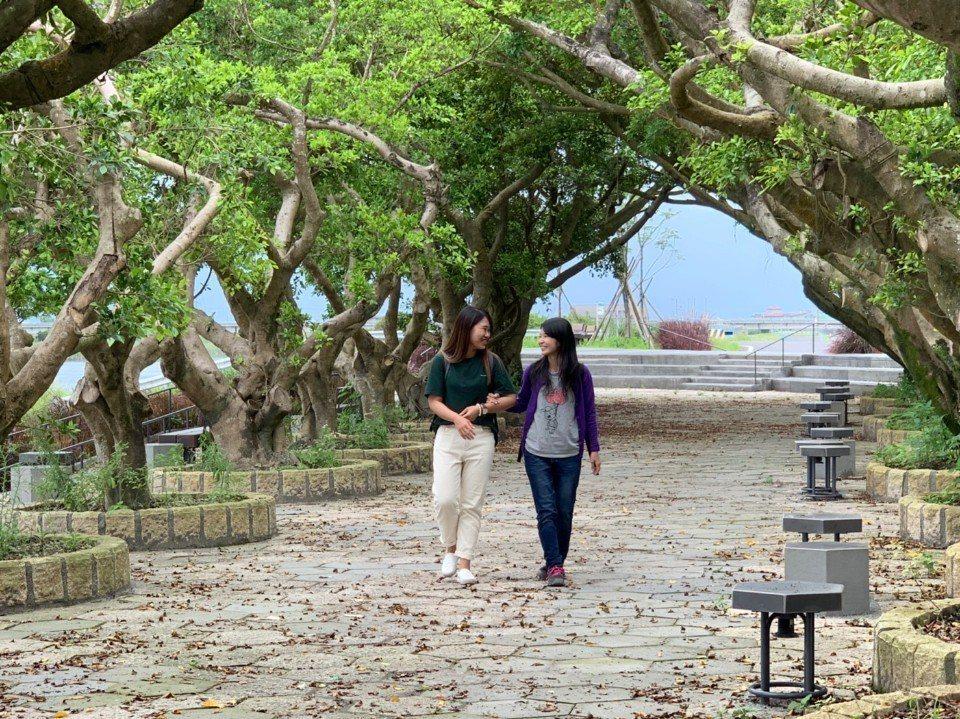 圖/東港榕樹公園。攝影/藍子