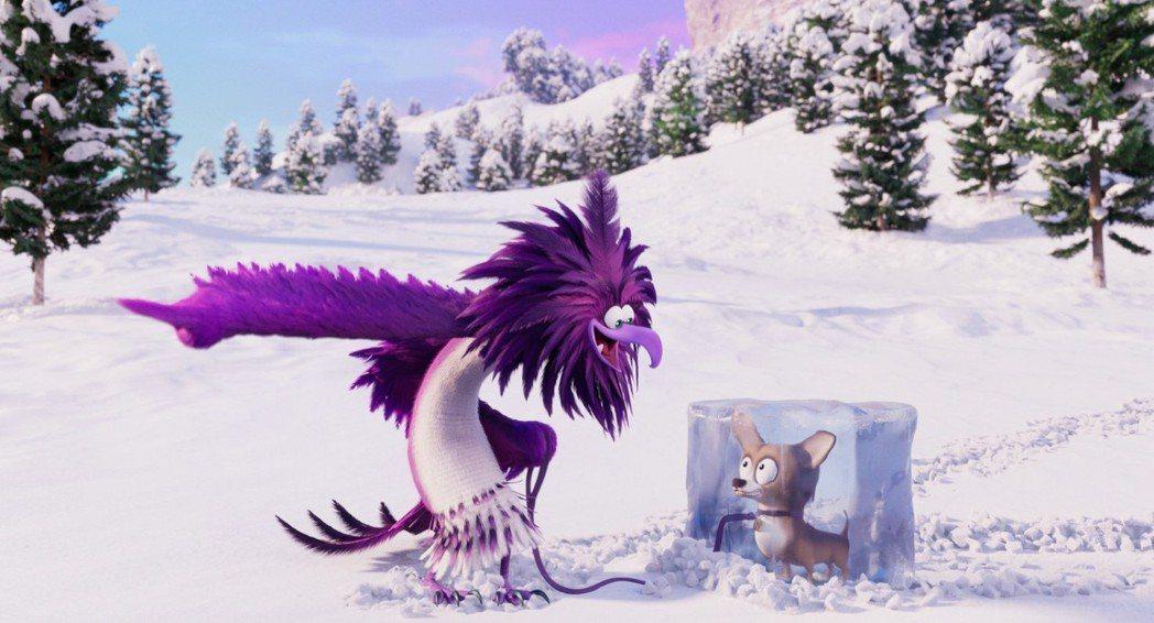 「憤怒鳥玩電影2:冰的啦」新登場的神秘反派來自寒帶地區,有奇妙的動機。圖/摘自i...