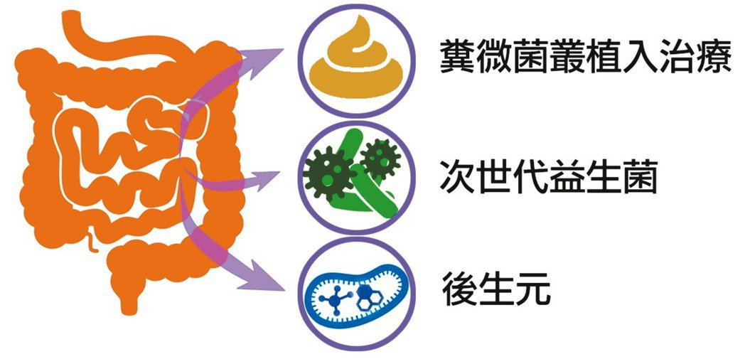 腸道菌種運用 圖/高承源