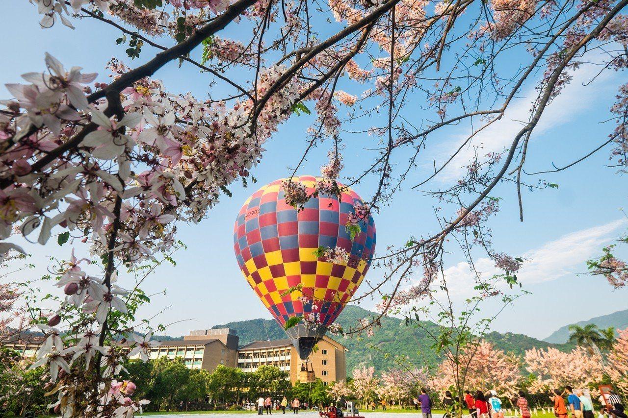 台東鹿鳴酒店今年暑假主打熱氣球優惠專案吸客,讓住房遊客可在飯店內就近體驗熱氣球魅...