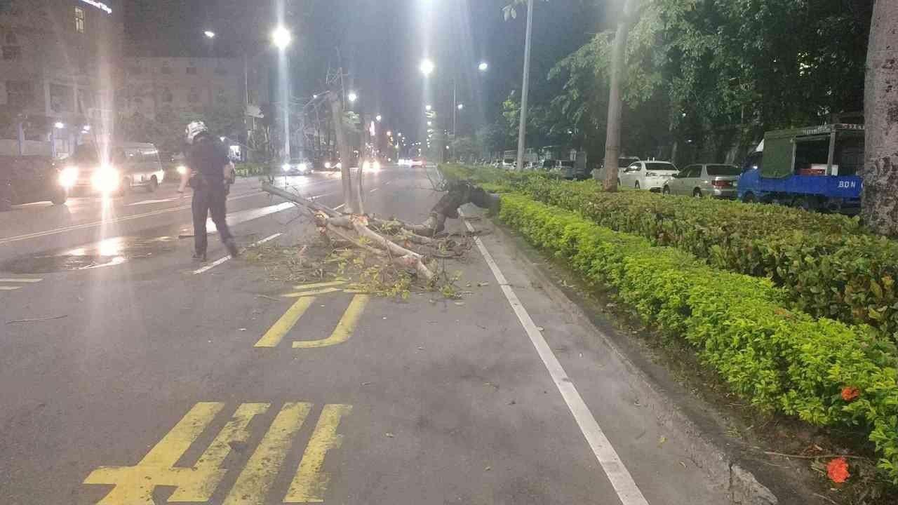 楠梓分局翠屏派出所巡邏員警昨深夜發現傾倒路樹占據快車道,連夜徒手鋸樹、搬樹搶通。...