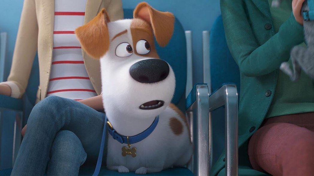 「寵物當家2」卡進大陸7月初的暑假檔。圖/摘自imdb