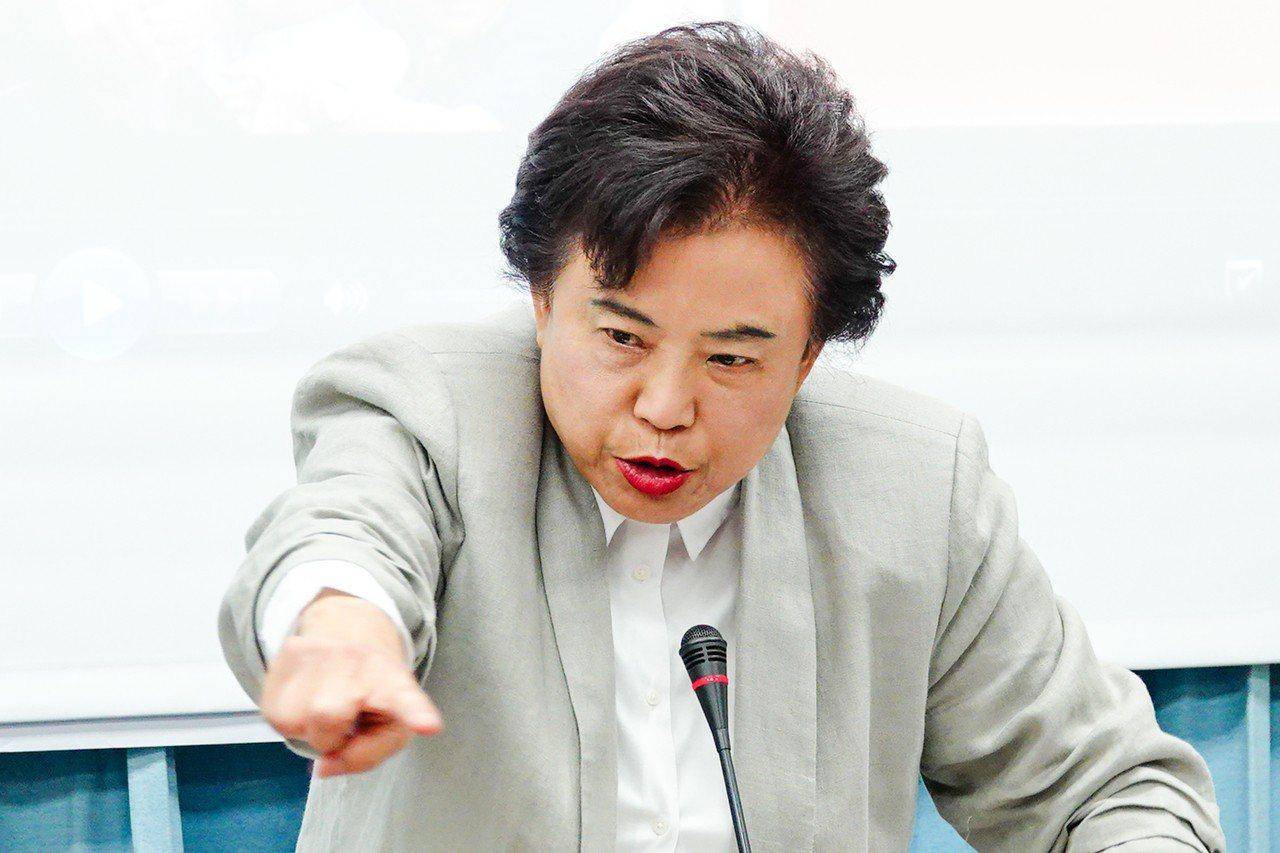 國民黨立委沈智慧。 記者王騰毅/攝影