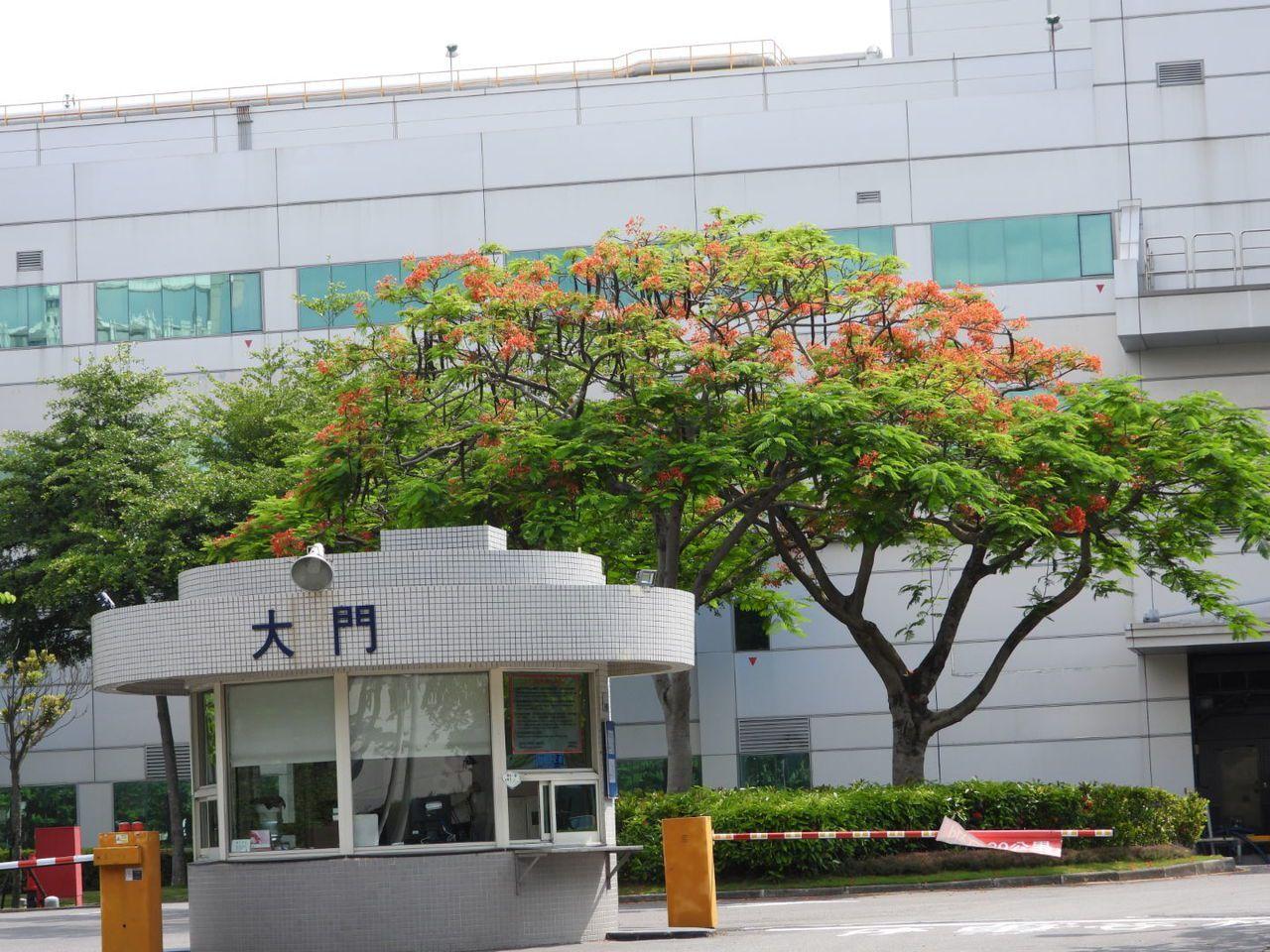 南科廠商在大門種植鳳凰木。記者周宗禎/攝影