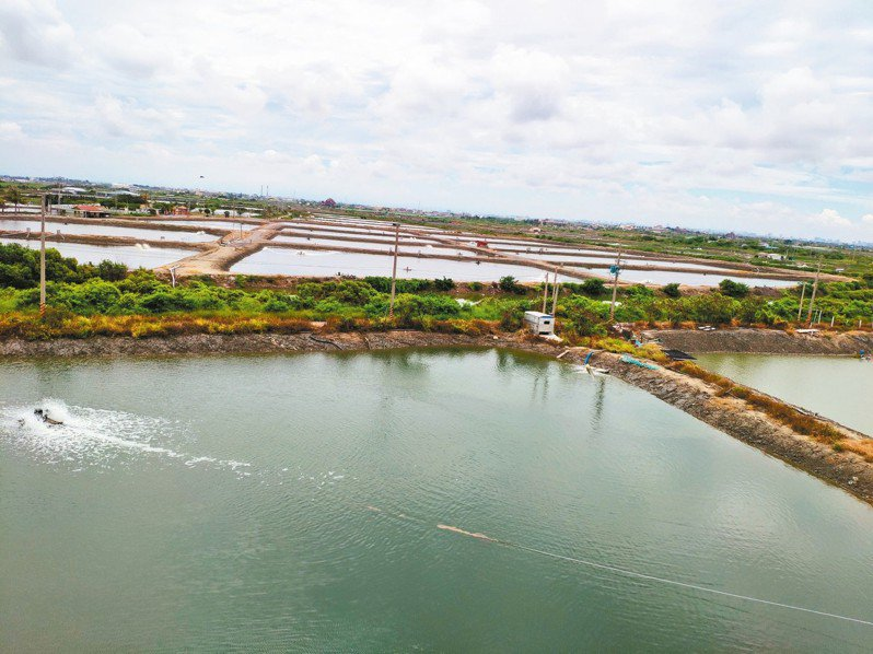 政府推動在台南沿海種綠電,養殖業者憂心未來沒有明天。 記者謝進盛/攝影