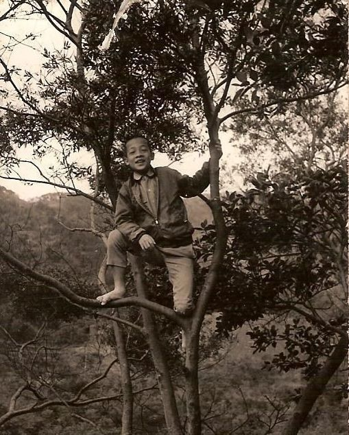 賴清德就讀萬里國小時,總喜歡在老家附近爬樹。 圖/賴清德提供