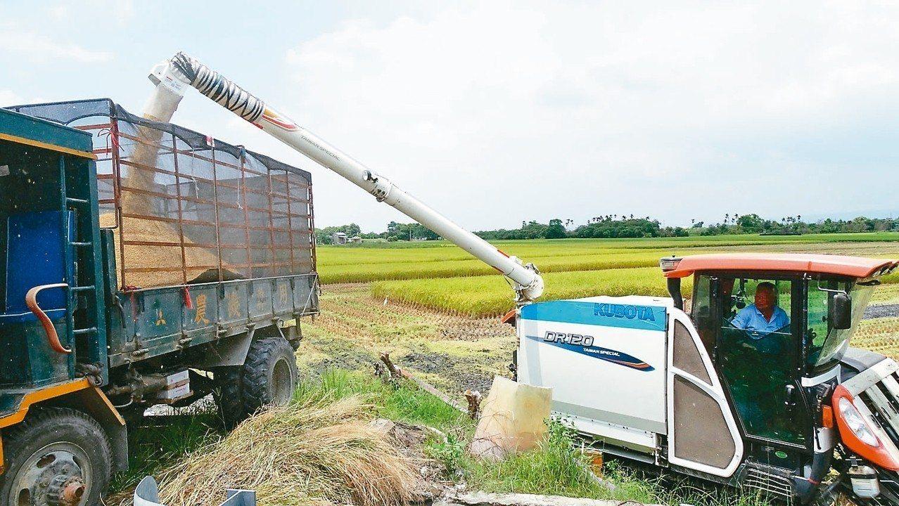 溪州鄉農民昨天開始收割一期稻作,是彰化縣最早收割的鄉鎮。 記者何烱榮/攝影