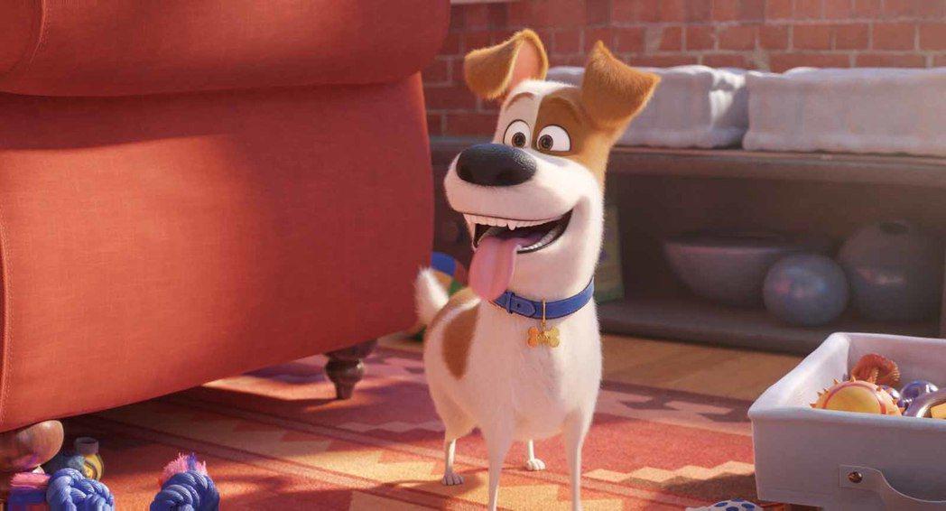 「寵物當家2」角色造型可愛,情節誇張逗趣。圖/摘自imdb