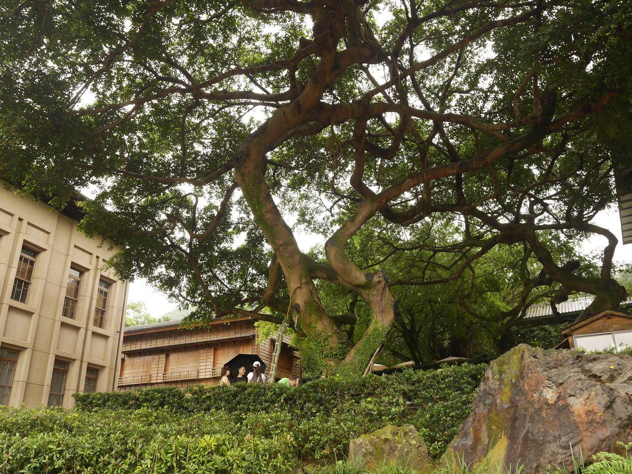 黃金博物館。記者吳淑君/攝影