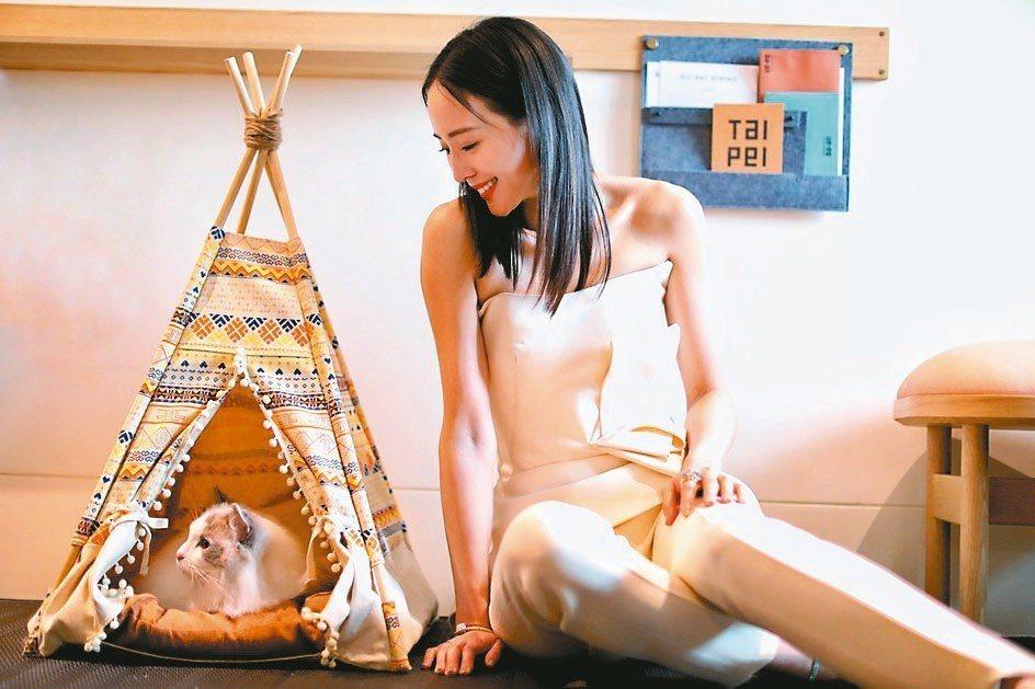 金普頓大安酒店對寵物超友善。 圖/各業者提供