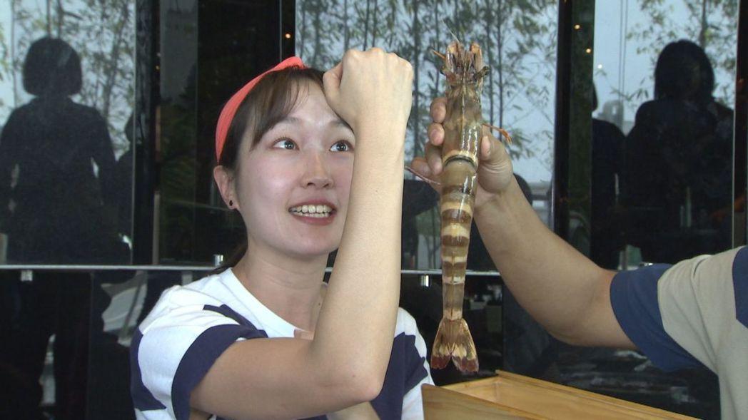 巴鈺吃到跟手一樣大的蝦子。圖/中天提供