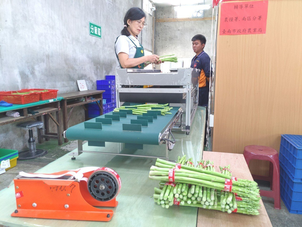 農糧署南區分署輔導台南市將軍區農會自國外引進全台第一台蘆筍組合計量機,今天在將軍...
