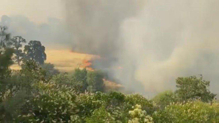 北加州宇洛縣山火延燒迅速,截至9日下午,火場面積已擴大爲2220畝。(電視新聞截圖)