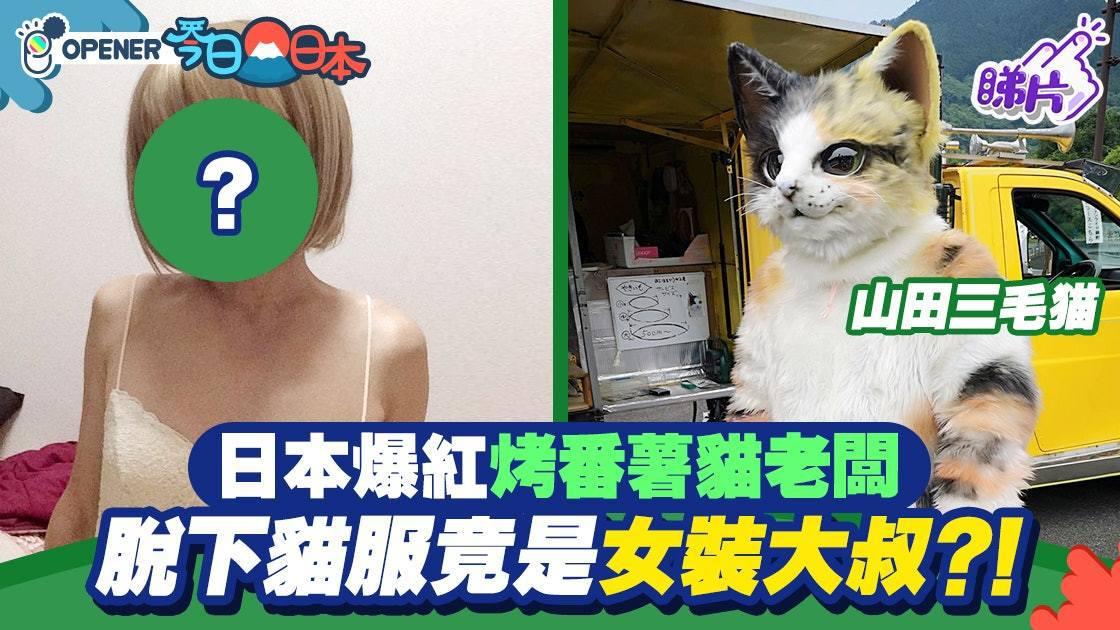 日本電視台節目到訪當地探望貓老闆,請求牠脫下貓服現真身,但經節目組死纏爛打後,終...